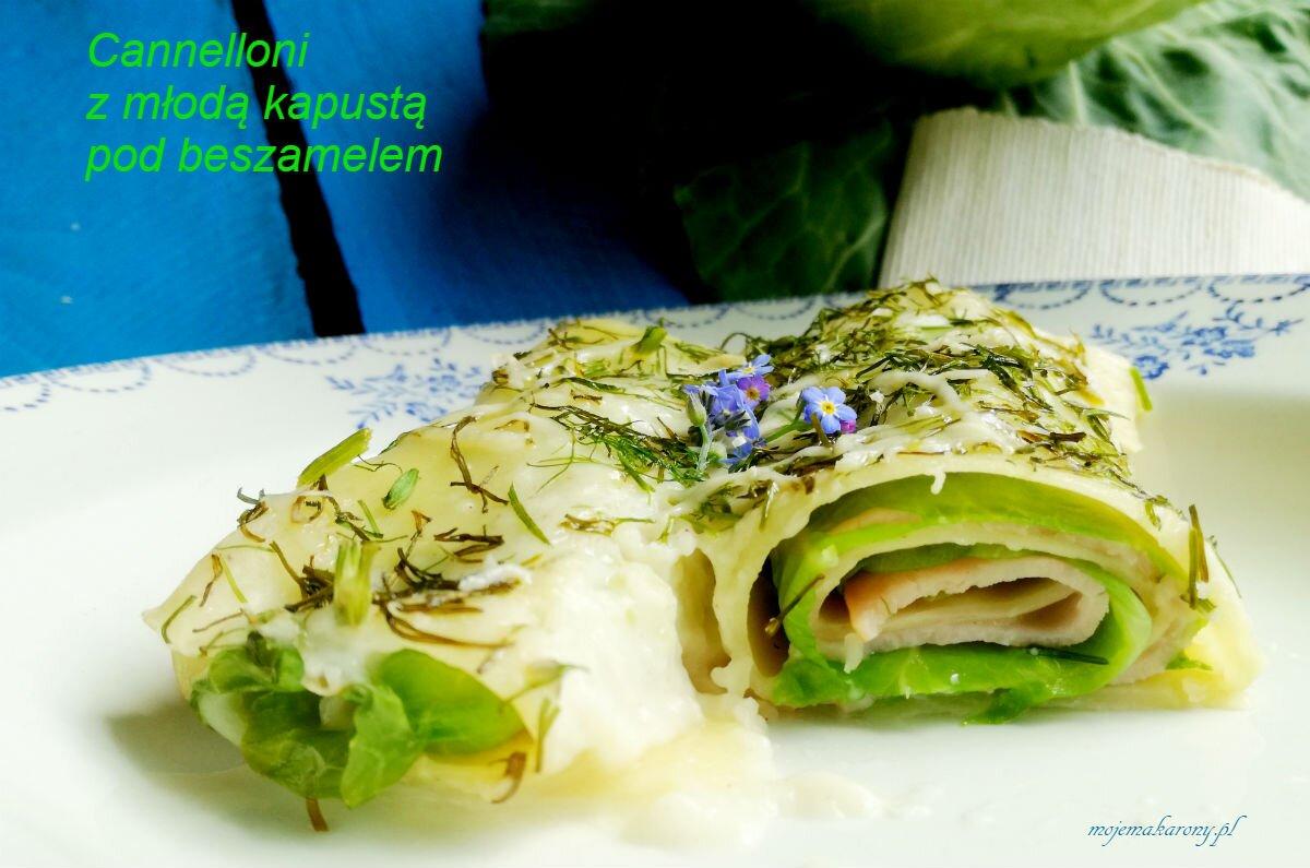 cannelloni-z-kapusta_1